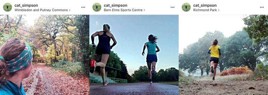 cat_simpson